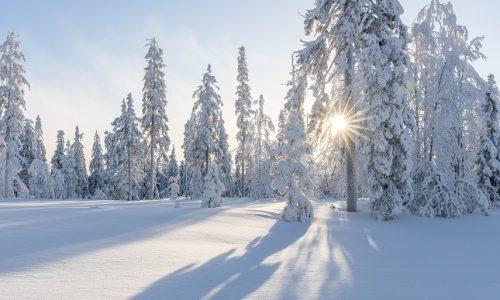 10 фактов о снеге